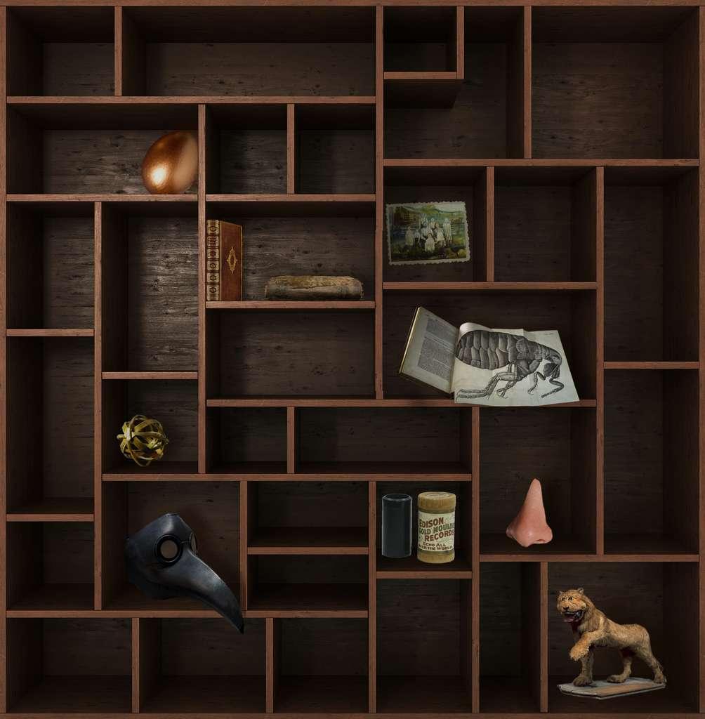 Et de neuf ! Rendez-vous dans deux semaines pour un nouveau chapitre du Cabinet de curiosités. © nosorogua, Adobe Stock, Futura