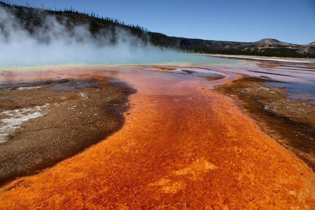 Les premières bactéries qui peuplaient la Terre devaient vivre dans des conditions très différentes des nôtres : volcanisme intense et atmosphère de composition différente. Elles se sont épanouies dans un environnement dans lequel nous ne survivrions pas bien longtemps. © jmenard48, Fotopédia, cc by sa 2.0