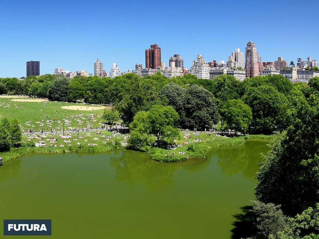 Central Park New York - États-Unis