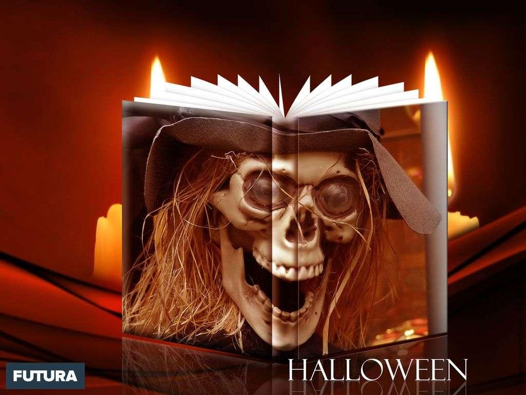 Halloween : le secret des sorcières