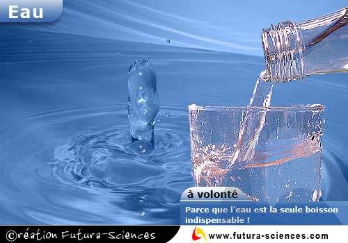 En été, de l'eau à volonté !