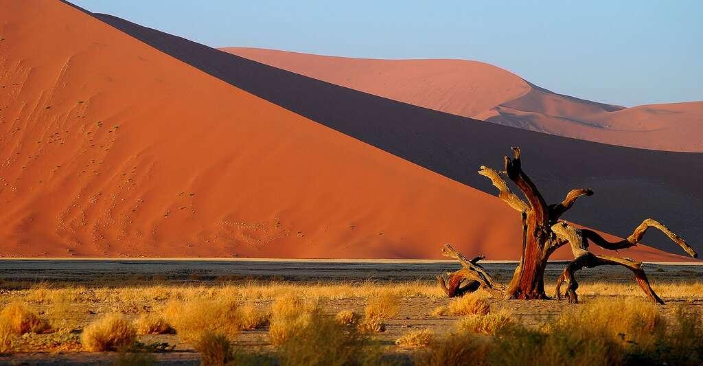 La Namibie lutte activement contre les diamants de sang. Ici, paysage de Namibie. © Klinkow, DP