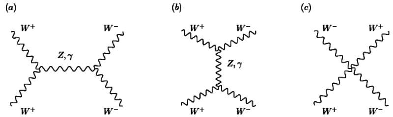 Des diagrammes de Feynman montrant des collisions entre bosons W sans l'intervention du boson de Brout-Englert-Higgs. Le temps s'écoule de bas en haut. Les bosons W sont chargés positivement (W+) et négativement(W-). Le diagramme du milieu correspond à une annihilation d'un boson W+ avec un boson W- qui donne un boson Z neutre ou un photon γ lesquels donnent plus tard une nouvelle pair de bosons W. © David Stancato, John Terning