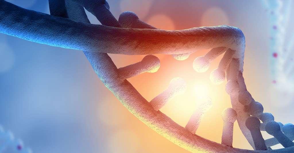 Brin d'ADN. © Sergey Nivens, Shutterstock
