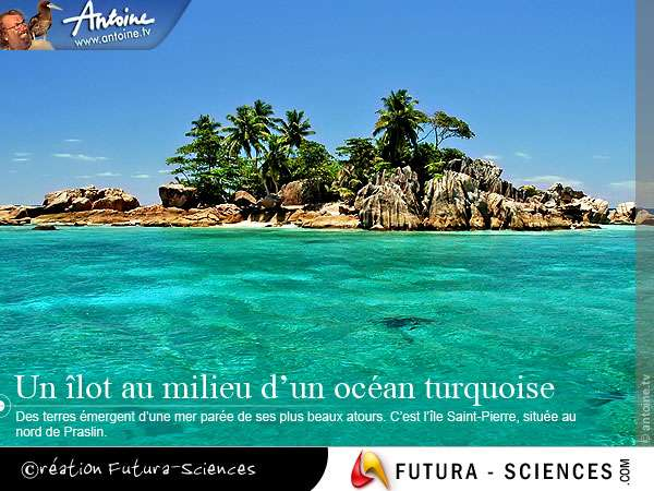 Seychelles le rêve !