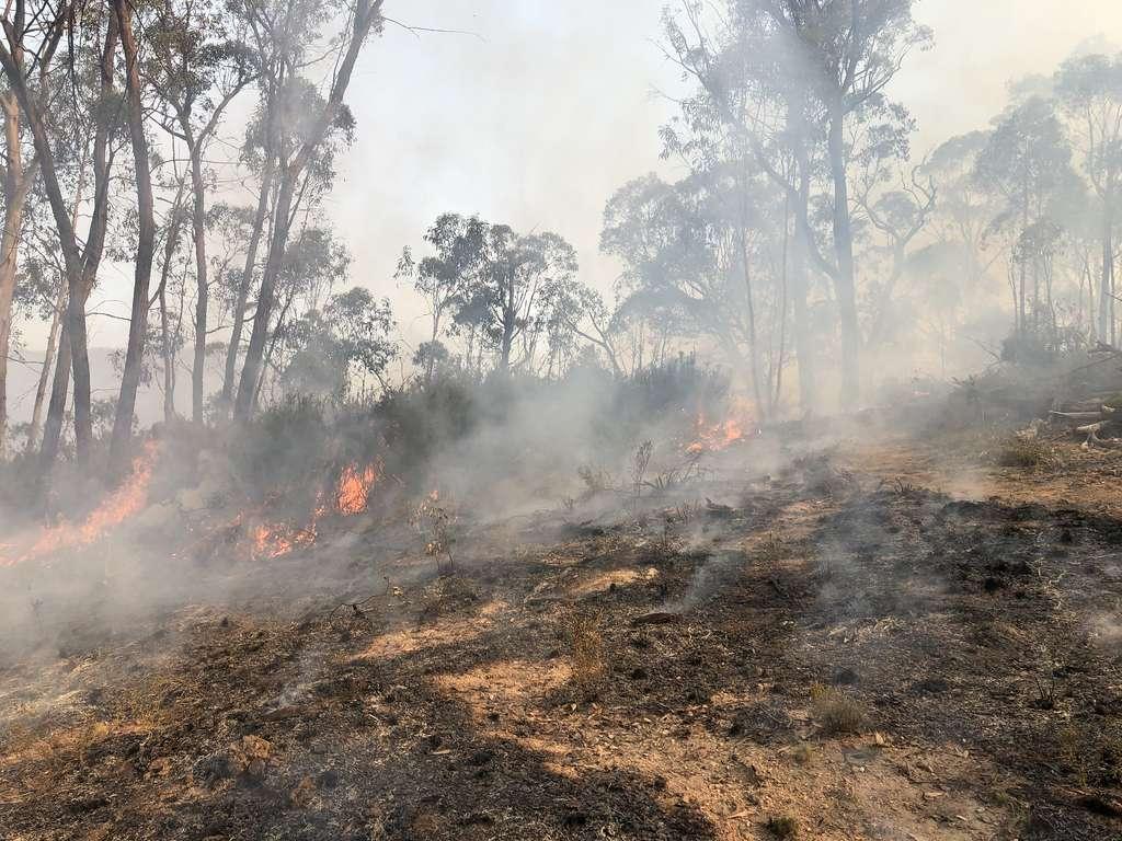 Un incendie de forêt dans la région de Tambo en Australie. © BLMIdaho, Flickr