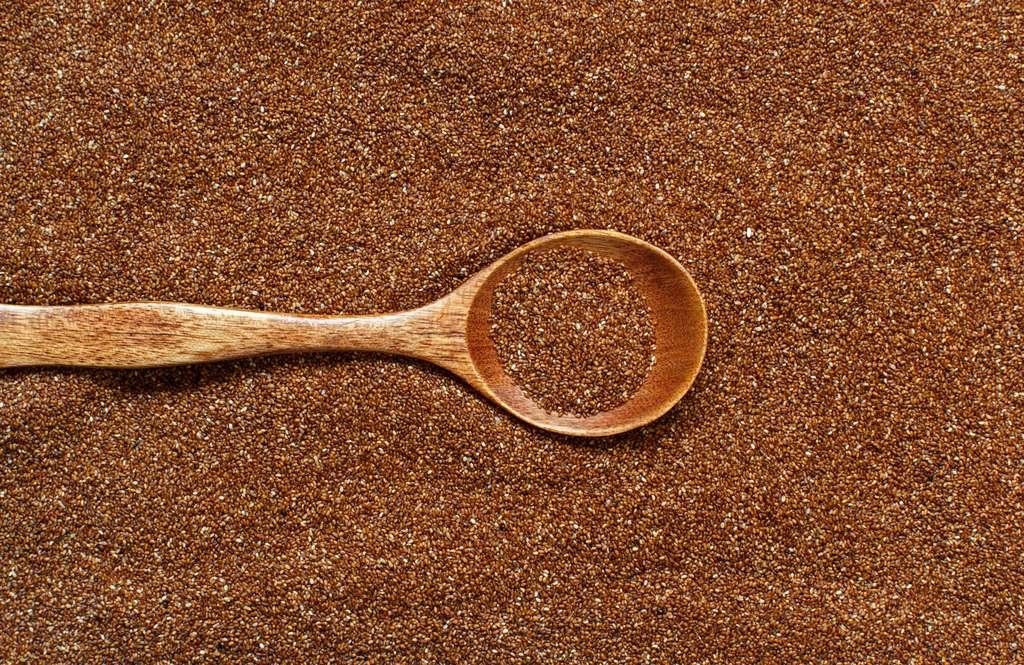 Le teff peut remplacer le blé. © katrinshine, Fotolia