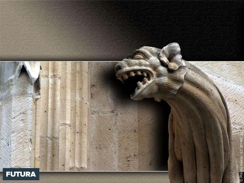 Gargouille cathédrale de Meaux