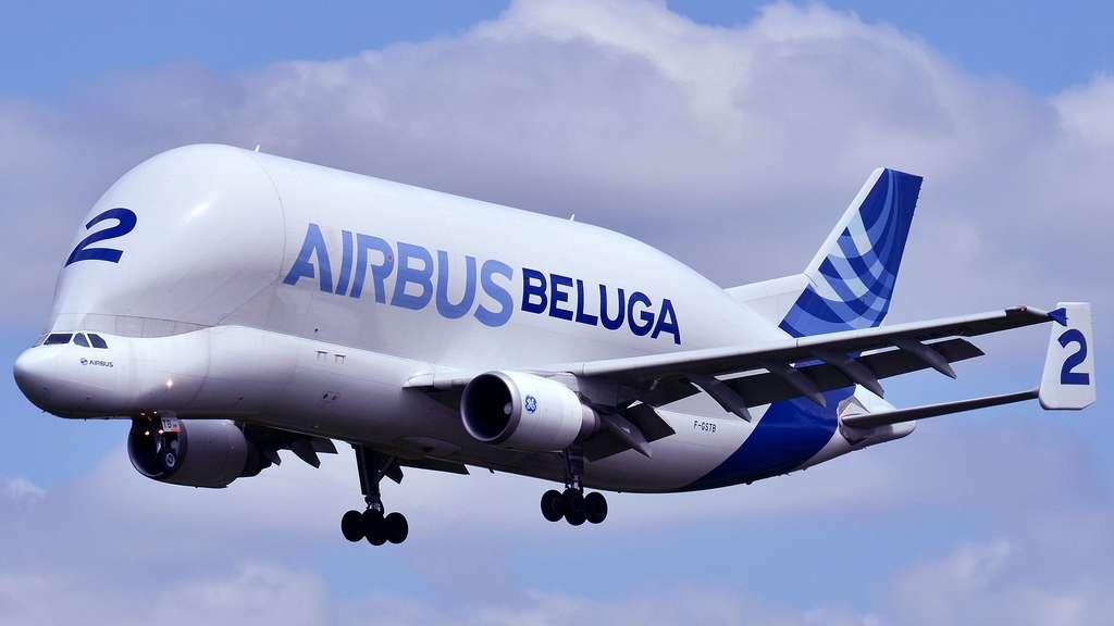 L'Airbus A300-600ST ou l'avion « Beluga »