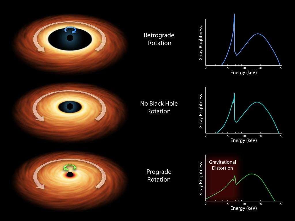 Sur ces schémas, on voit différentes hypothèses concernant la valeur de la vitesse de rotation d'un trou noir de Kerr et son sens par rapport à celui de la matière dans le disque d'accrétion qui l'entoure. Selon ces caractéristiques, on prédit un spectre d'émission en rayons X donné. Différents spectres sont visibles à droite, avec en ordonnée la luminosité et en abscisse l'énergie (donc la fréquence). Au centre, on voit le cas d'un trou noir sans rotation. En haut, un trou noir en rotation dans le sens contraire de son disque (retrograde rotation) et en bas, dans le même sens (prograde rotation). La distance minimale pour une orbite stable est plus faible dans ce dernier cas, ce qui veut dire que le disque d'accrétion est proche de l'horizon du trou noir si la vitesse de rotation de celui-ci est grande. © Nasa