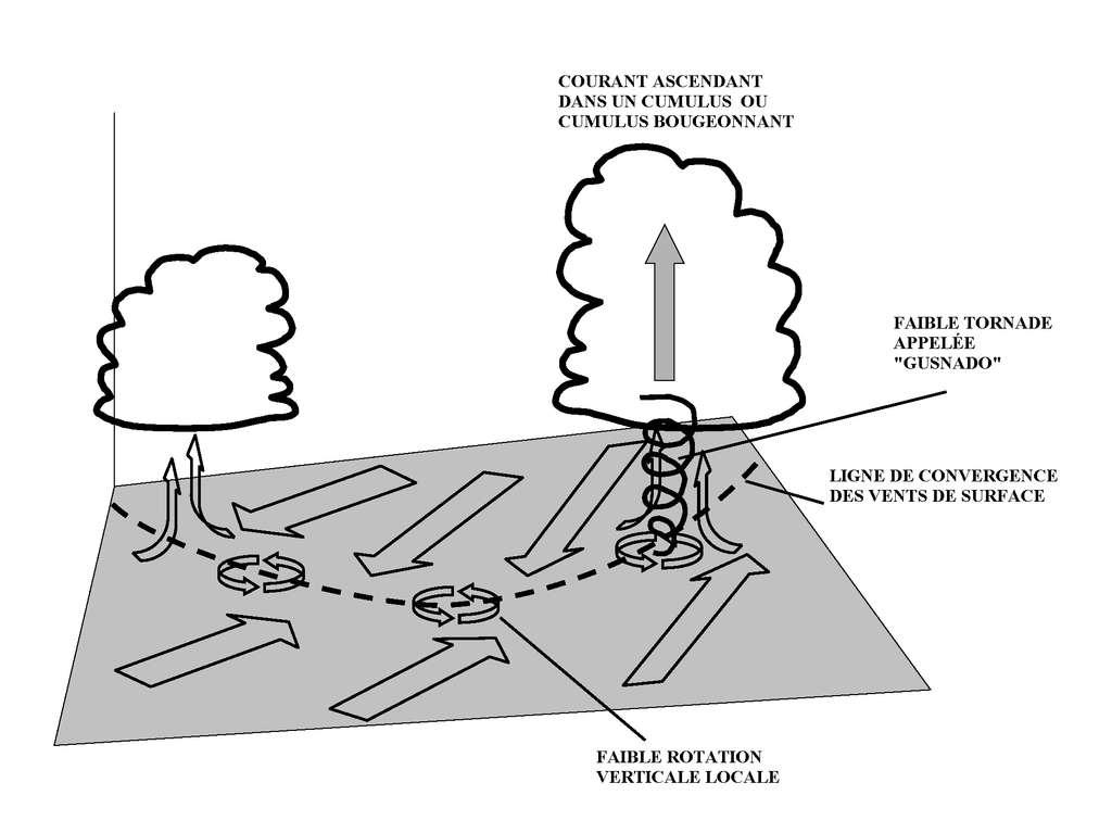 La variation horizontale du vent de surface forme des tourbillons (des zones sombres) dans l'océan. Peu à peu, l'embrun s'élève et prend l'aspect d'un anneau de particules. Sous un nuage convectif, cet anneau est étiré et forme la trombe marine. © Pierre cb, Wikipédia, DP