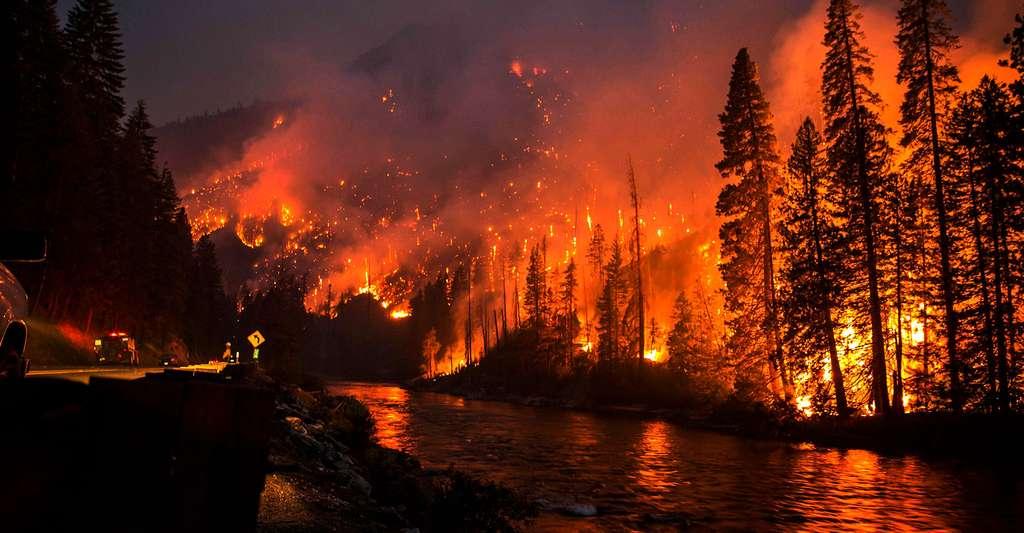 Le feu près de Chiwaukum États-Unis en juillet 2014. © Washington DNR, CC by-nc 2.0