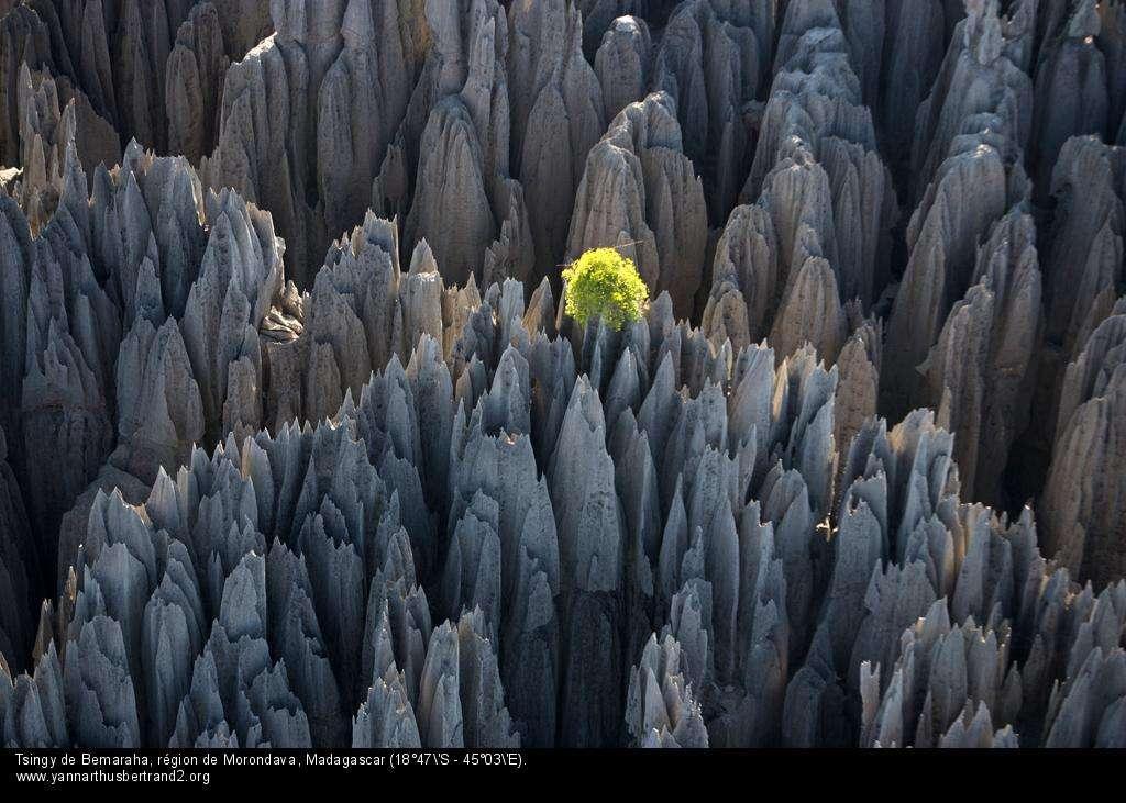 Tsingy de Bemaraha, région de Morondava, Madagascar (18°47'S – 45°03'E).