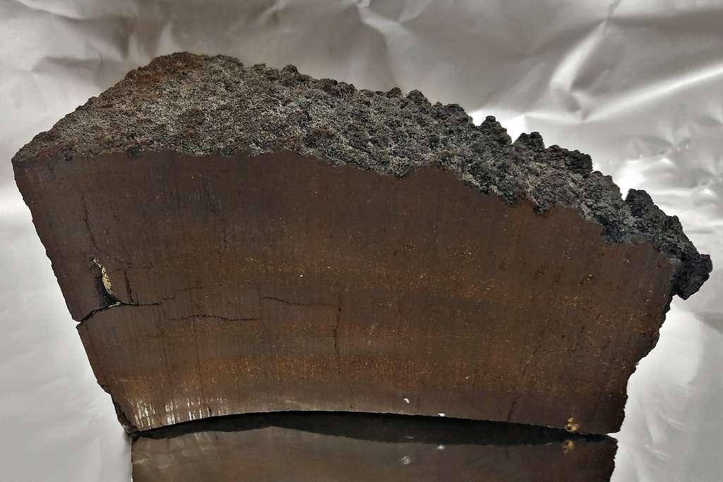 Cette croûte de manganèse a commencé à croître il y a environ 20 millions d'années, couche par couche. Des chercheurs ont trouvé du fer 60 et des niveaux élevés de manganèse 53 dans des couches âgées d'environ 2,5 millions d'années. La preuve d'une supernova proche de la Terre il y a 2,5 millions d'années. © Dominik Koll, TUM