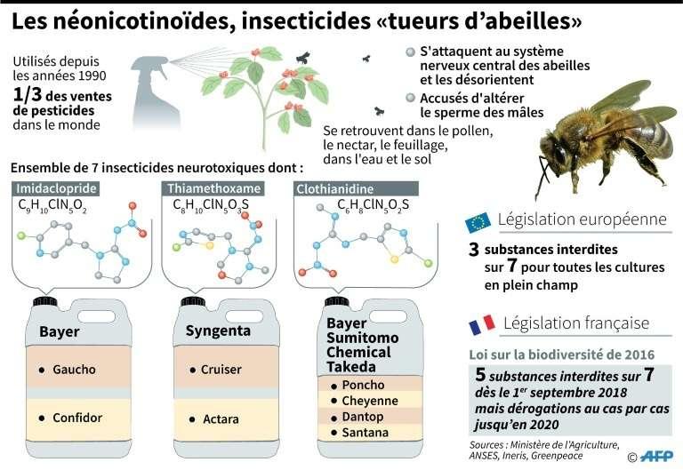 Les néonicotinoïdes, insecticides « tueurs d'abeilles ». © Elia Vaissière, AFP