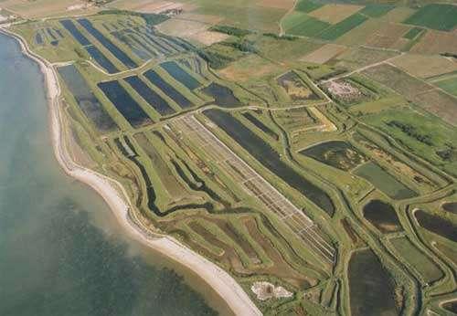 Marais salant de l'ile de Ré - Charent-maritime