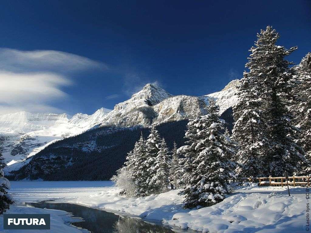 Glacier Victoria à Lake Louise Park, Alberta - Canada