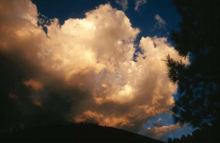 Le cumulus congestus, un nuage porteur d'averses