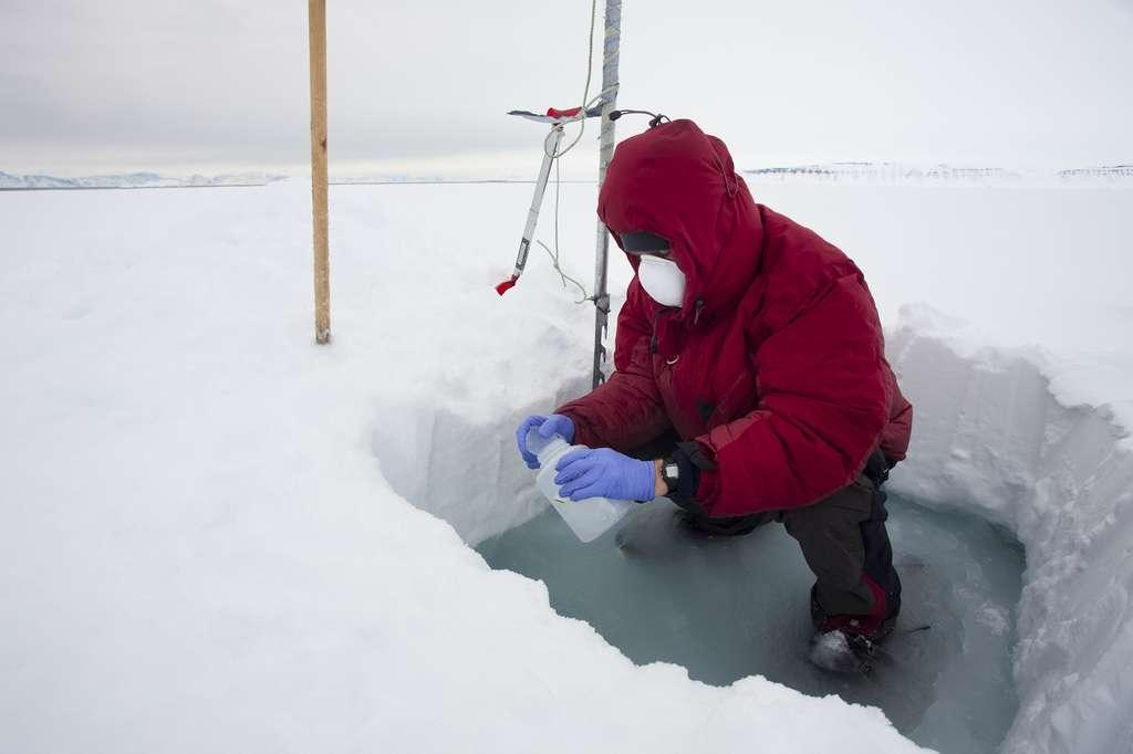 Prélèvement de glace sur la banquise