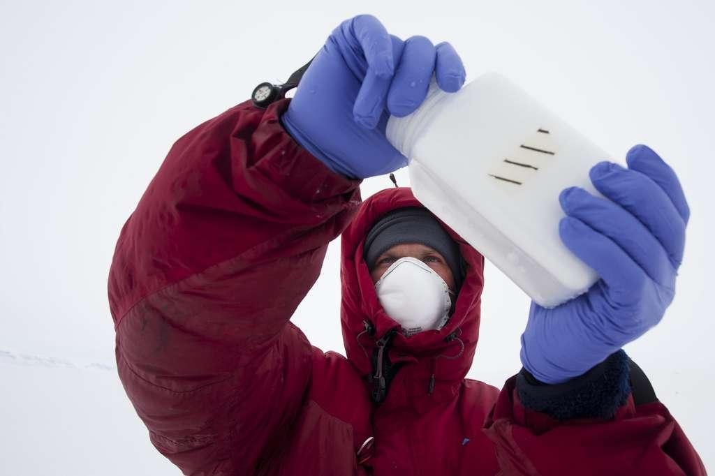 Prélèvement de glace de la banquise lors de la préparation au Groenland en avril 2011. Ces échantillons seront analysés au laboratoire de microbiologie au laboratoire Ampère (CNRS). © Raphaël Demaret