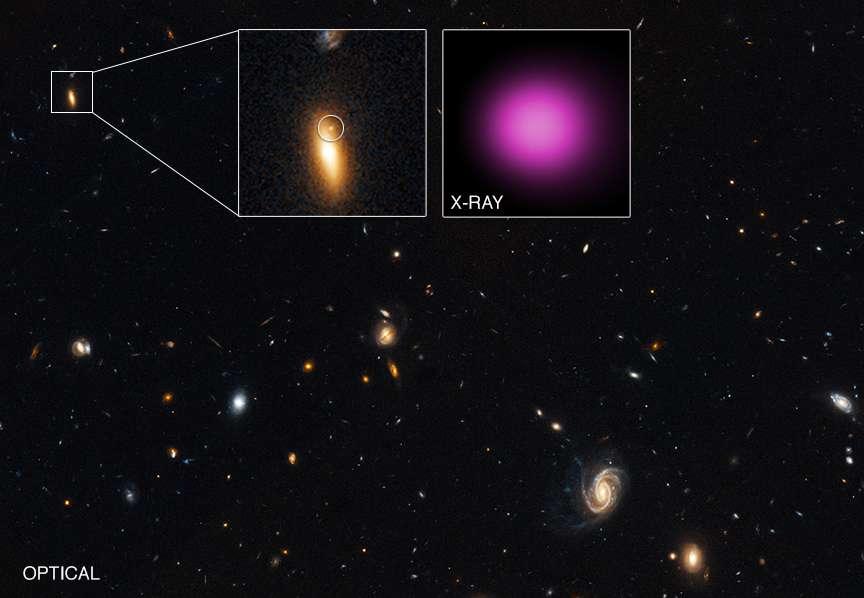 Cette image a été prise dans le visible par le télescope Hubble dans la bande de Groth étendue. Un zoom sur une galaxie lenticulaire montre une source lumineuse indiquée par un cercle. Un autre zoom, cette fois-ci avec Chandra, montre une source X en fausse couleur (mauve). © Rayons X : Nasa/CXC/UNH/D.Lin et al. ; visible : Nasa/STScI