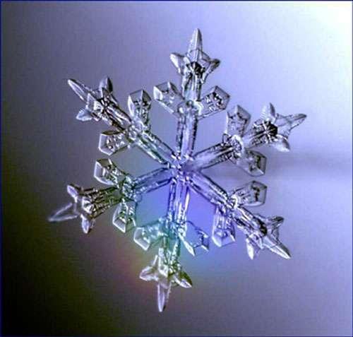 Cristal de neige.
