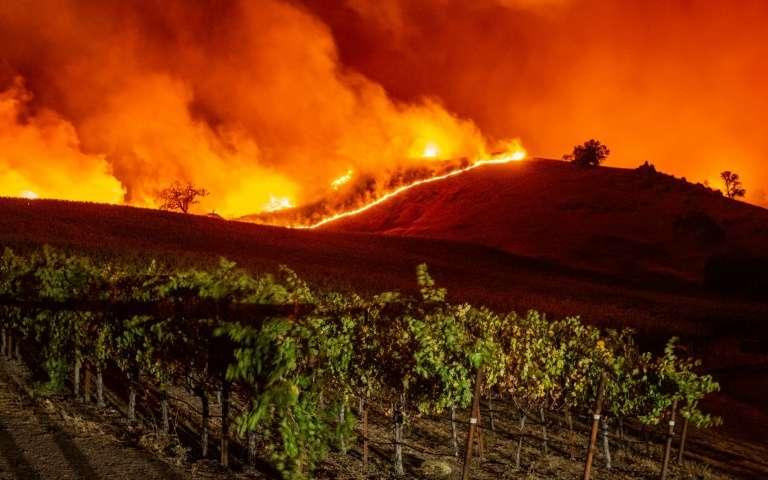 Le « Kincade Fire » s'approche des vignes, près de Geyserville, le 24 octobre 2019 en Californie. © Josh Edelson, AFP