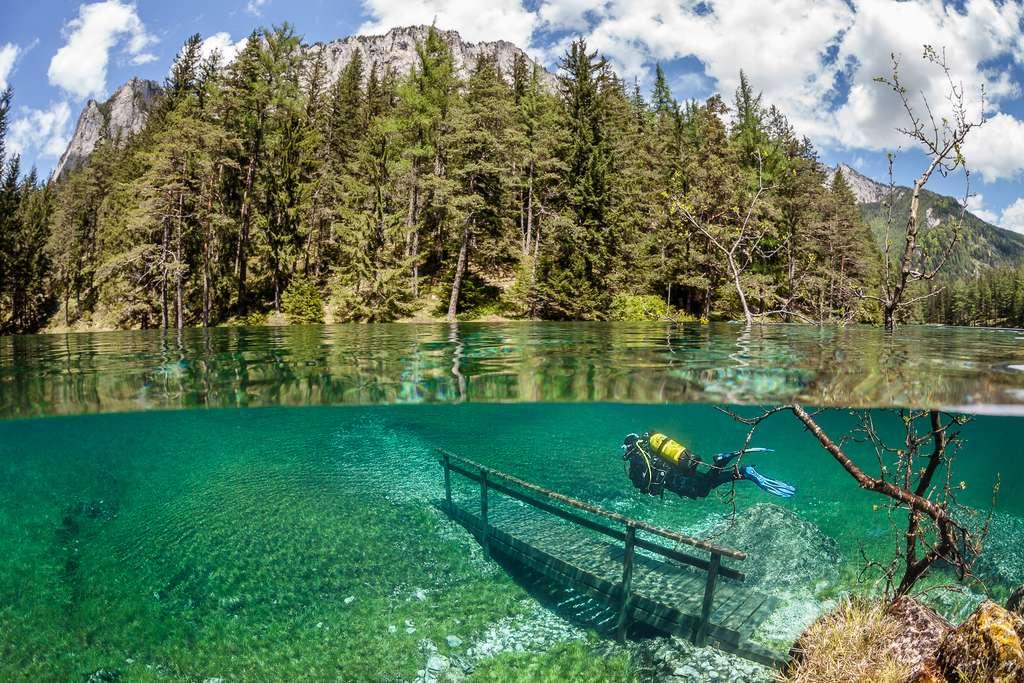 Le monde enchanté du lac Vert