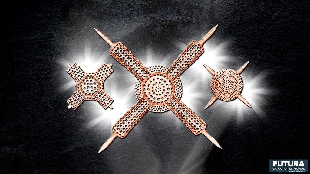 Des squelettes parfaitement symétriques