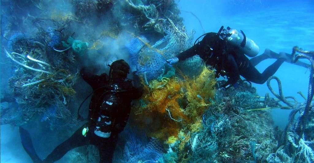 La vie des tortues est en danger avec les filets, les plastiques en mer. © Dr. Dwayne Meadows, NOAA/NMFS/OPR. Wikimedia commons, CC by 2.0