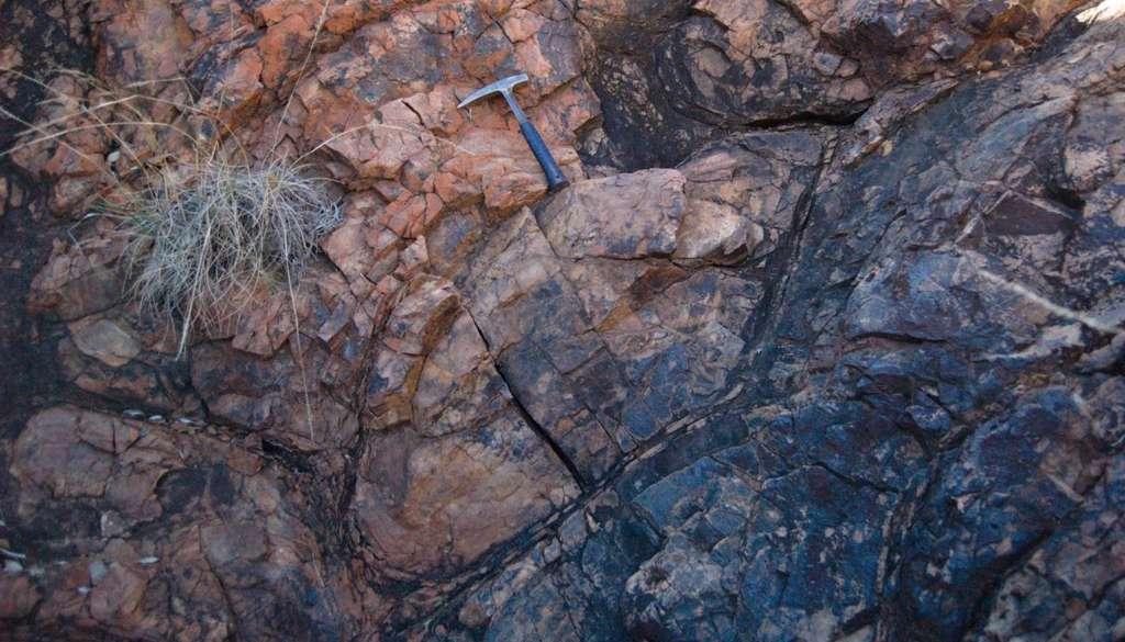 Les laves en coussins datant de l'Archéen échantillonnées à Pilbara. © Jana Meixnerova, Benjamin Johnson