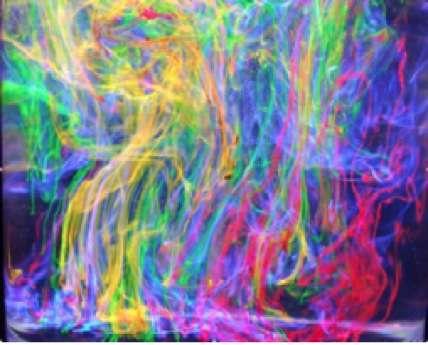 Colorants fluorescents sous une lampe UV, ajoutés sous forme de poudre à la surface d'un mélange de glycérol et d'éthanol. En se dissolvant progressivement, les grains laissent derrière eux des traînées fluorescentes (bleu : pyranine ; vert-jaune : fluorescéine ; jaune-orangé : rhodamine 6G ; rouge : rhodamine 101). © B. Valeur, DR