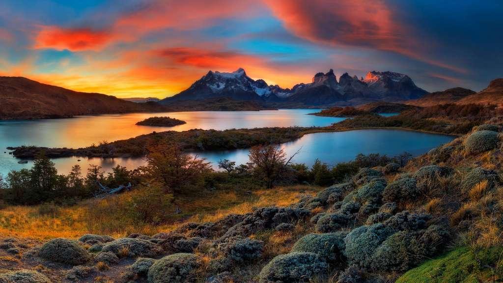 Le lac Pehoé et ses guanacos