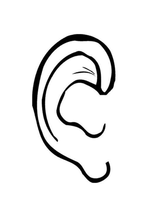 Pour en savoir plus sur l'audition. © DR