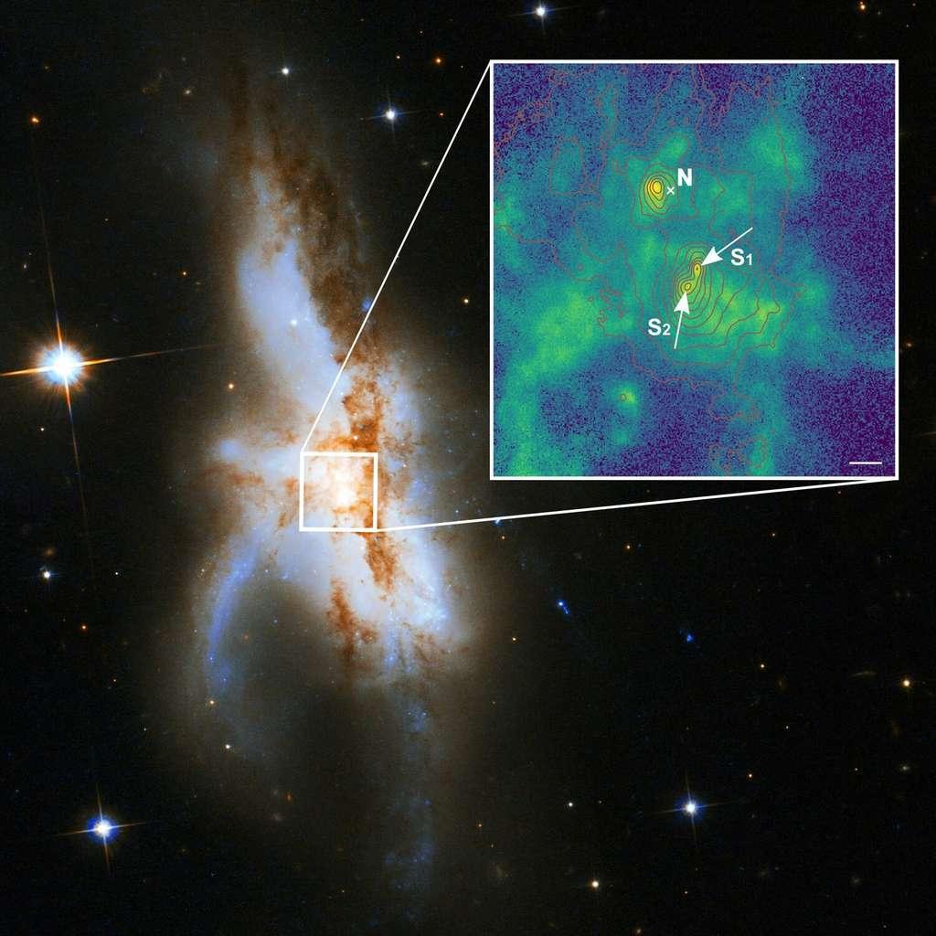 La galaxie irrégulière NGC 6240. De nouvelles observations montrent qu'elle abrite non pas deux mais trois trous noirs supermassifs en son noyau. Le trou noir nord (N) est actif et était connu auparavant. La nouvelle image agrandie à haute résolution spatiale montre que la composante sud consiste en deux trous noirs supermassifs (S1 et S2). La couleur verte indique la distribution du gaz ionisé par le rayonnement entourant les trous noirs. La longueur de la barre blanche correspond à 1.000 années-lumière. © P Weilbacher (AIP), Nasa, ESA, the Hubble Heritage (STScI-Aura), ESA-Hubble Collaboration, et A Evans (University of Virginia, Charlottesville-NRAO-Stony Brook University)