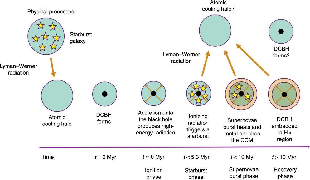 Un schéma du scénario de formation directe de trou noir supermassif, voir les explications ci-dessous. © Nature Astronomy Kirk S Barrow