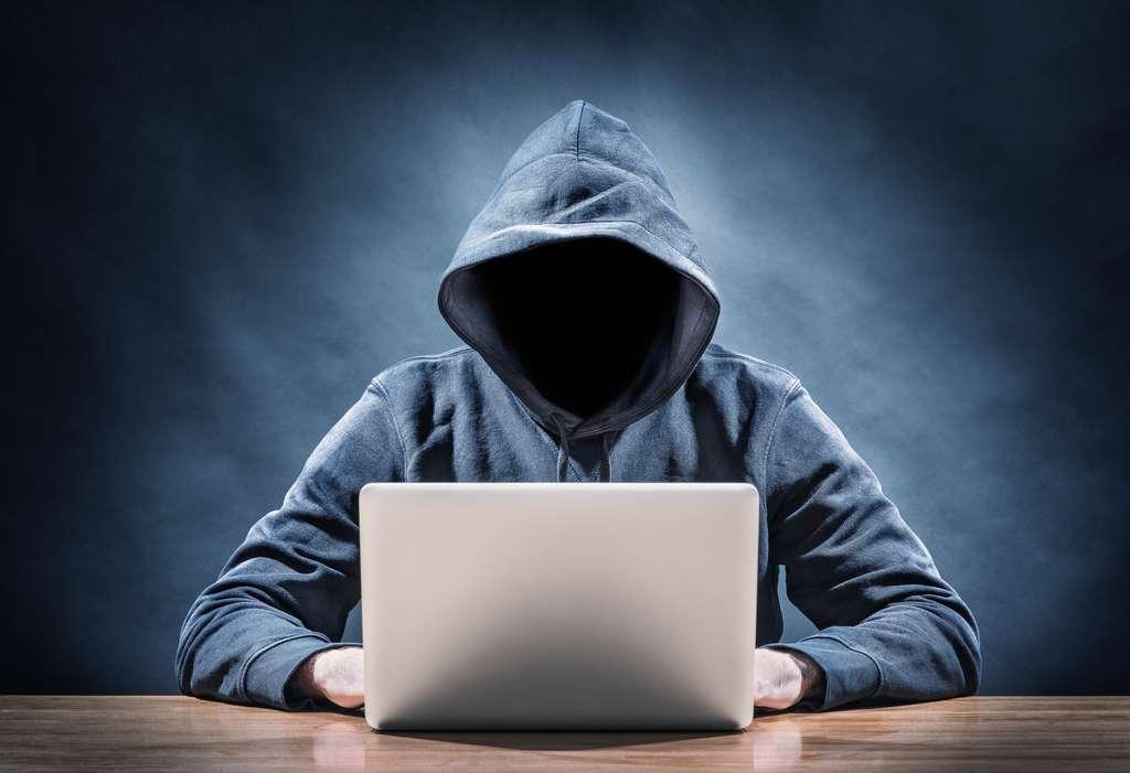 Des groupes d'hackers réutilisent des logiciels malveillants créés par d'autres pirates informatiques. © Frank Peters, Adobe Stock