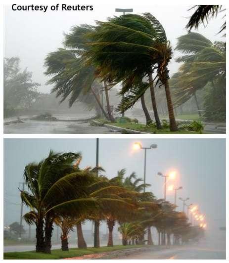 Wilma : Cancun