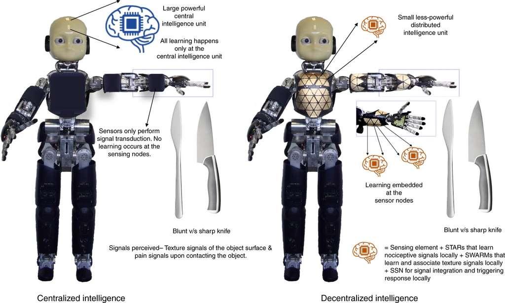 Une illustration de l'intelligence décentralisée pour le traitement de la douleur. © Université de technologie de Nanyang
