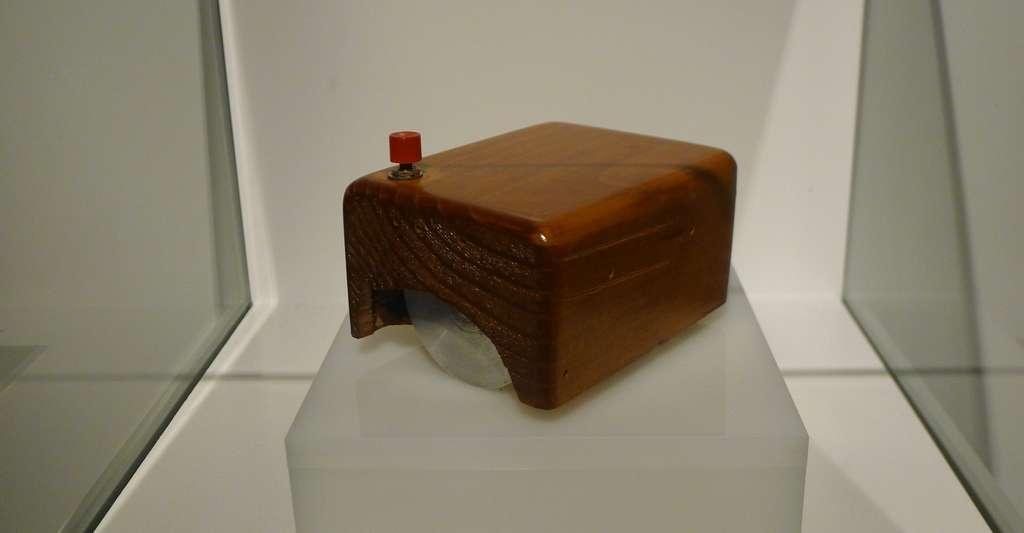 Drôle de souris que celle inventée par Douglas Carl Engelbart. © Asadal, Wikipedia, CC by-sa 4.0