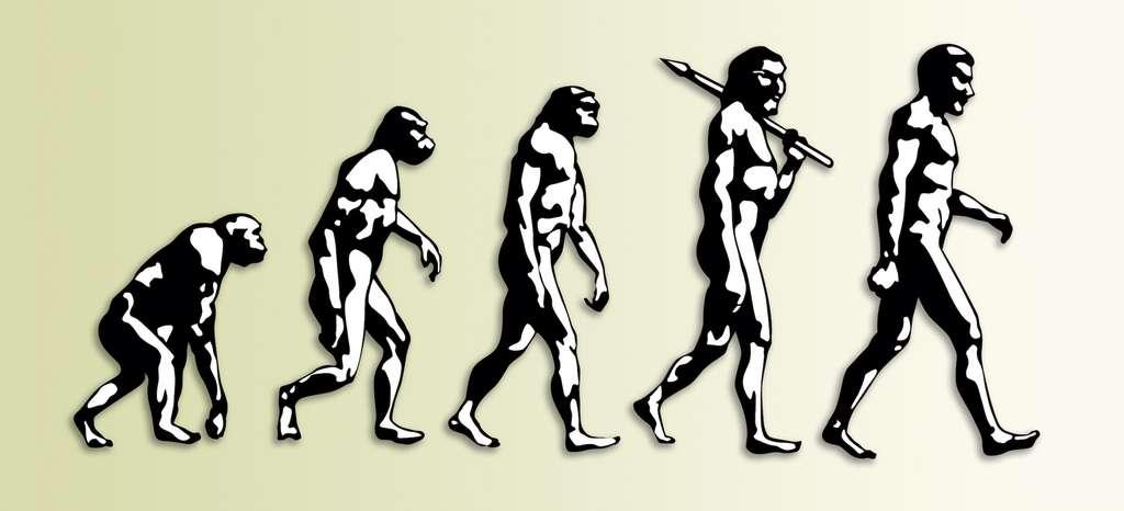 Songez qu'Homo sapiens n'est apparu sur Terre que depuis 200.000 ans, alors que la planète s'est formée il y a 4,5 milliards d'années ! © Giordano Aita, Adobe Stock