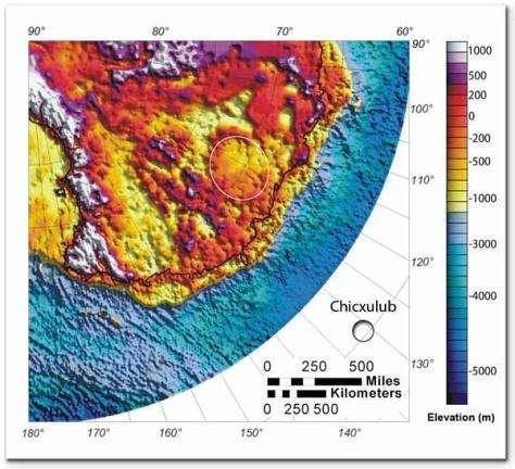 Image radar des élevations de terrain à l'est de l'Antarctique Le cratère présumé, situé en Terre de Wilkes, est entouré d'un cercle blanc Figure également sur cette image le cratère Chicxulub, à titre de comparaison (Courtesy of Ohio State University)