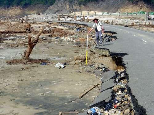"""Indonésie janvier 2005 : après le tsunami du 26 décembre 2004, la mission """"Tsunarisque"""" cherche à comprendre les raisons du désastre pour permettre une meilleure prévention. Route endommagée au sud de Lhok Nga. Grâce aux mesures effectuées sur le terrain - taille des crevasses et éboulements, hauteur juqu'à laquelle les branches des arbres sont cassées, sens dans lequel ces derniers sont couchés - il est possible d'évaluer la hauteur, la force et la direction des vagues du tsunami. © CNRS Photothèque / LAVIGNE Franck ."""