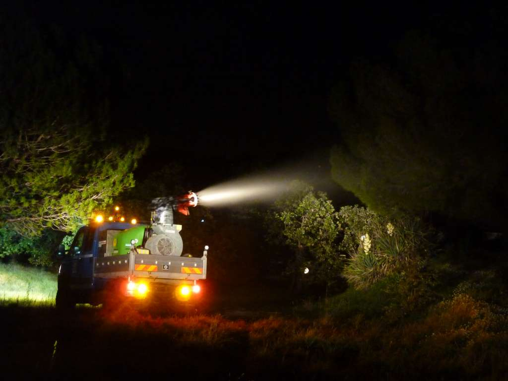 Les pulvérisations préventives d'insecticide biologique sur les pins, foyers très appréciés des colonies de chenilles processionnaires, se font de nuit afin de ne pas déranger les riverains. © Cavem