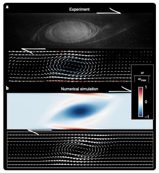 Les chercheurs de l'université d'Aix-Marseille (France) ont recréé la Grande Tache rouge de Jupiter en laboratoire (en haut) et par simulation numérique (en bas). © D. Lemasquerier et al., Nature Physics