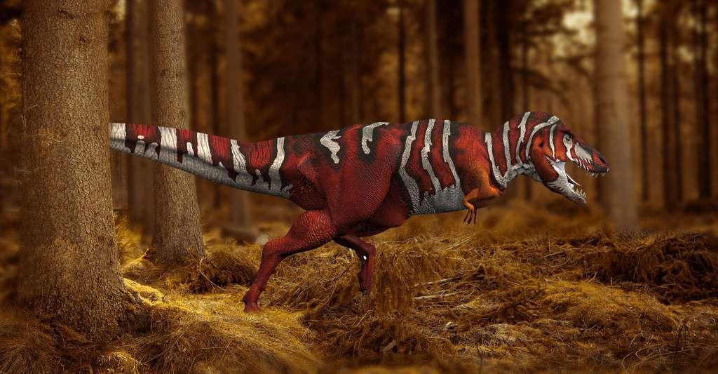 Tyrannosaurus Rex. © Ryanz720, DP