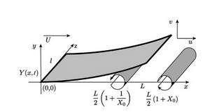 Sur une surface ondulant dans un fluide, des forces aérodynamiques apparaissent… Crédit M. Argentina et L. Mahadevan, dans Fluid-flow induced flutter of a flag, Pnas, 2005