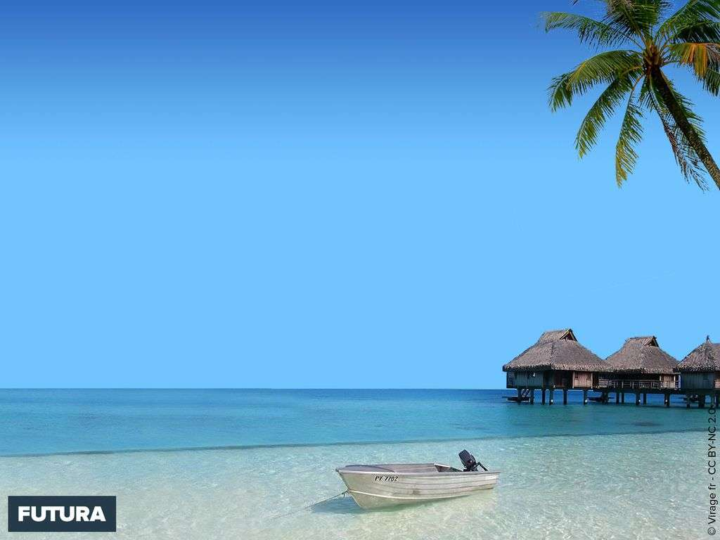 Rêve de Polynésie