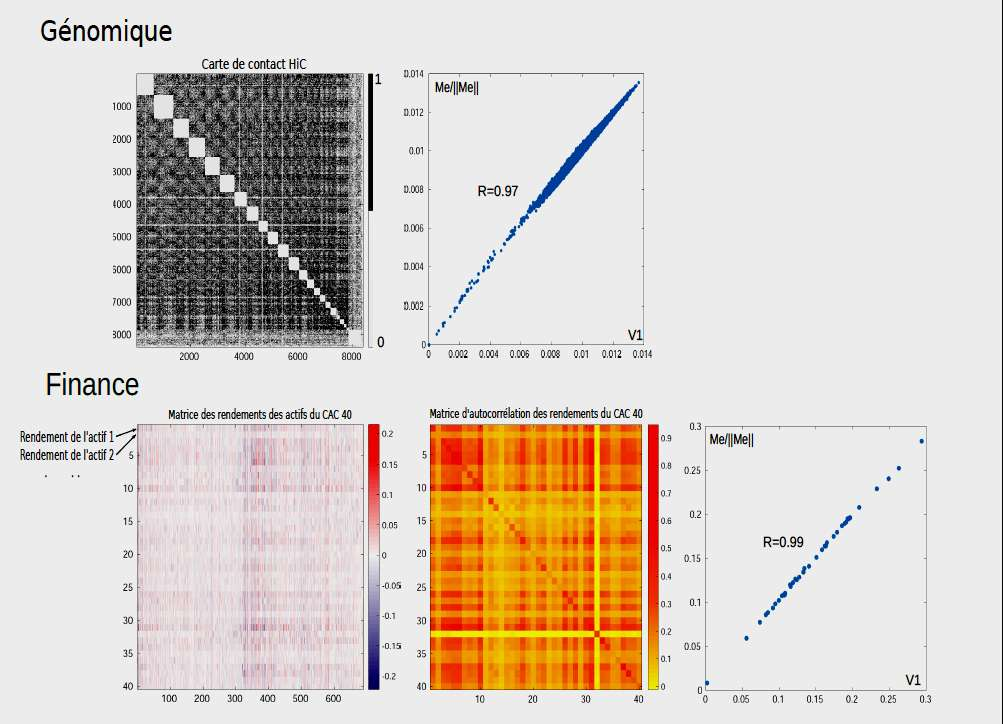 Figure 6 - En haut, il est représenté une carte de contact, suivi du graphique V1 versus Me/ llMell. En bas, nous voyons la matrice des rendements du CAC 40, puis la matrice de corrélation, avec le graphique V1 versus Me/ llMell. Dans les deux cas, les droites sont quasiment parfaites, comme en témoignent les coefficients de régression linéaire très proches de 1. © Julien Riposo - Tous droits réservés