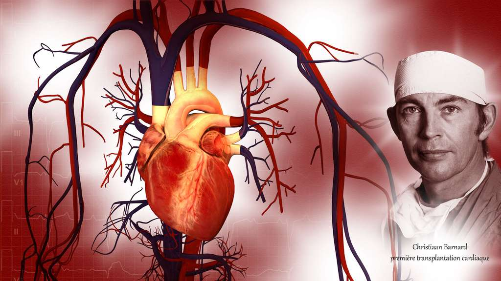Christiaan Barnard, premier chirurgien à greffer un cœur